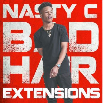 bad-hair-extension-nasty-c