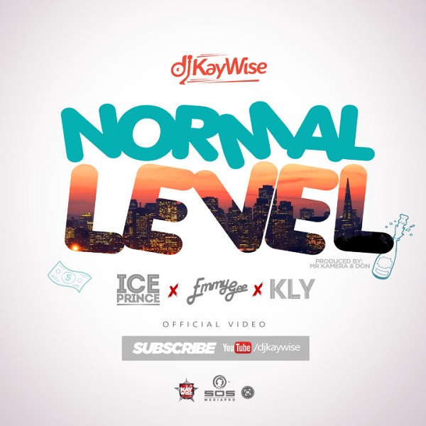 DJ Kaywise Normal Level Video